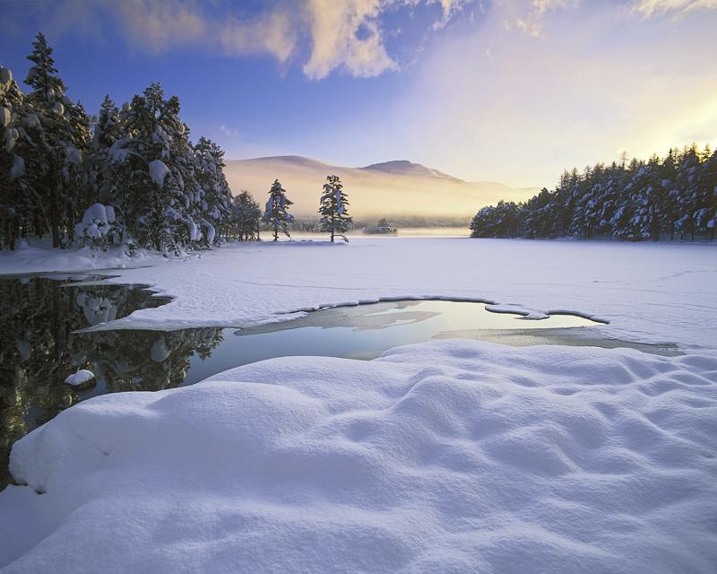 Loch Eilein Sublime, Loch An Eilein, Cairngorms, Scotland, pillows, snow, white, deep, unblemished, perfection, mist, il photo