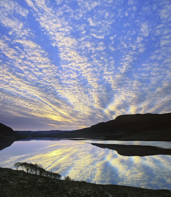 Loch Lurgainn Dawn, Loch Lurgainn, Inverpolly, Scotland, birch, brush, reflected, sky, fingers, exploding, smooth, row   photo