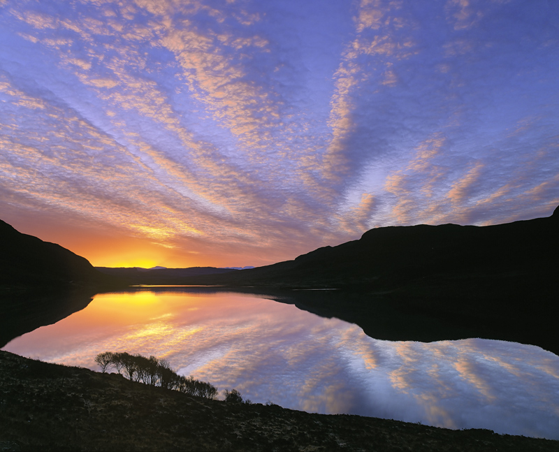 Lurgainn Sunrise, Loch Lurgainn, Inverpolly, Scotland, gorgeous, sunrise, copse, scrubby, brush, marching, reflection photo