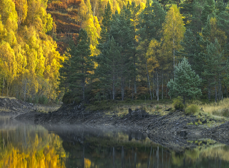 Mirrored Tapestry Affric, Glen Affric, Highlands, Scotland, golden, birch, autumn, colour, water, low, scar, mist, flami photo
