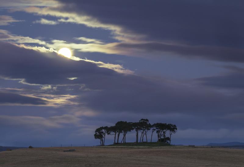 Moonset Gollanfield, Gollanfield, Highlands, Scotland, moon, sunrise, weather, cloud, horizon, pine, copse, cloud photo