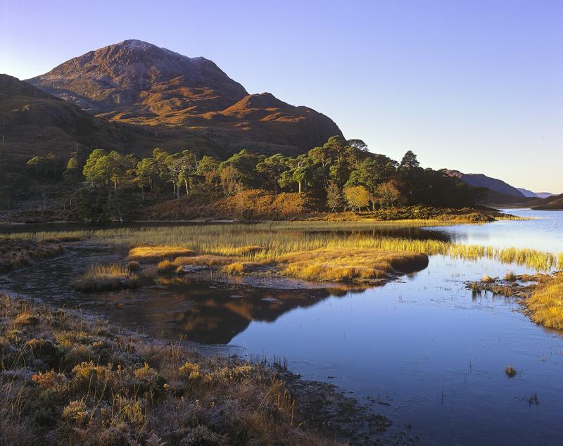 One Clair Morning, Loch Clair, Torridon, Scotland, cold, frosty, crisp, twisted, scots pine, grassy islands, orange, sky photo