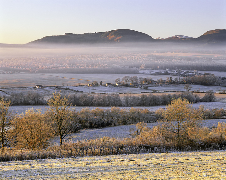 One Fine Morning, Strathconon, Highlands, Scotland, gorrgeous, winter, morning, mist, layers, valley, trees, gold photo