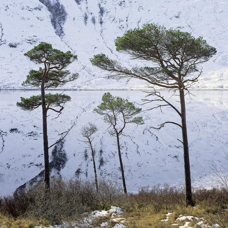 Parental Guidance, Loch a Chroisg, Torridon, Scotland, Achnasheen, sunset, steep, mountains, reflection, snow, slopes  photo