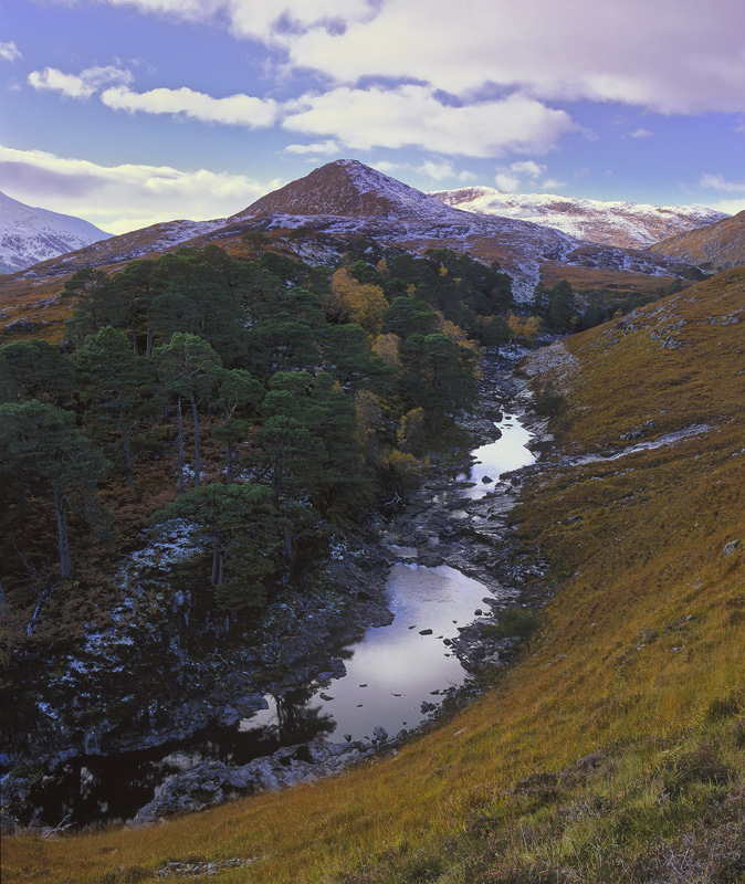 Pine Gorge Strathfarrar, Strathfarrar, Highlands, Scotland, glen, gorge, snow, sprinkled, birch, scots pine, bracken, he photo