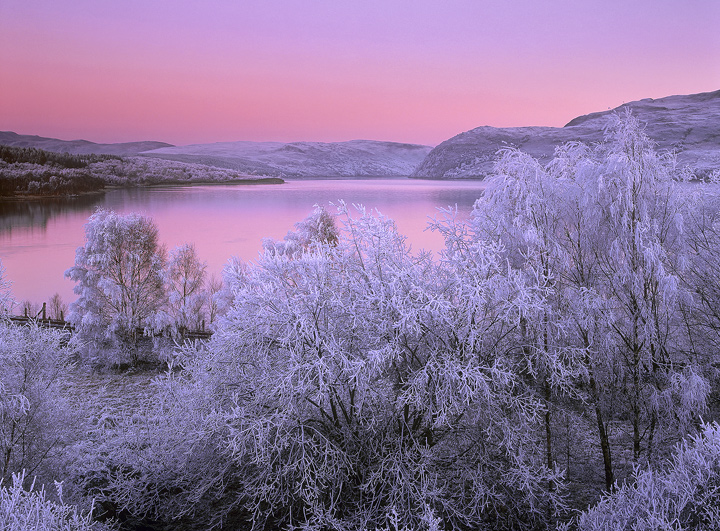 Pink Chill, Loch Luichart, Achnasheen, Scotland, cold, winter, frost, earth shadow, intense, sunset, reflection, pink photo