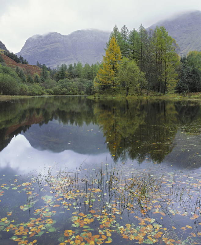 Rainbow Confetti, Loch Torren, Glencoe, Scotland, birch, beech, larch, green, leaves, still, reflective, sky, floating  photo