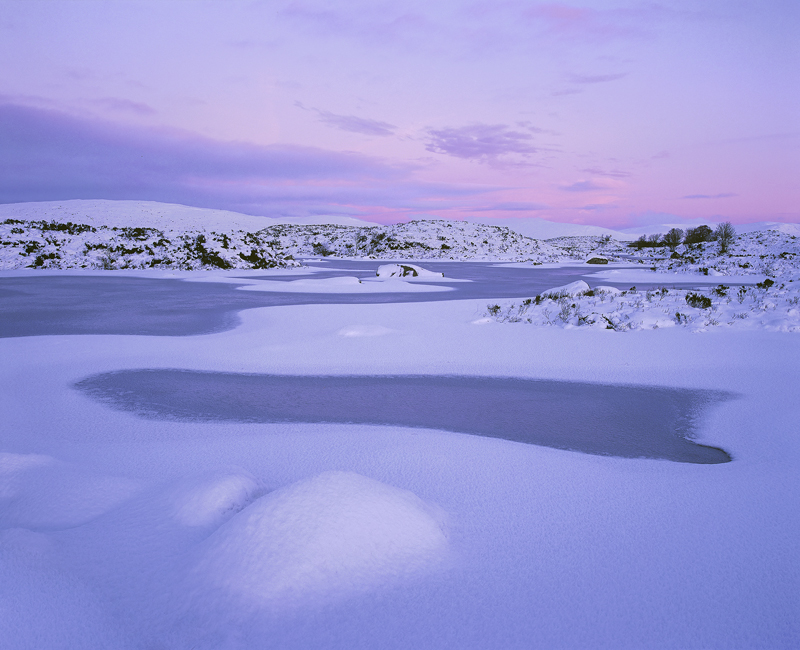 Raspberry Mallow, Loch Ba, Rannoch Moor, Scotland, soft, colours, winter, snow, raspberry, red, glow, dusk, delicious   photo