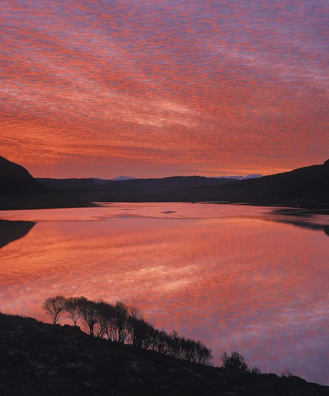 Royal Blood, Loch Lurgainn, Inverpolly, Scotland, winter, morning, sunrises, still, reflection, birch, scrub, silhouette photo
