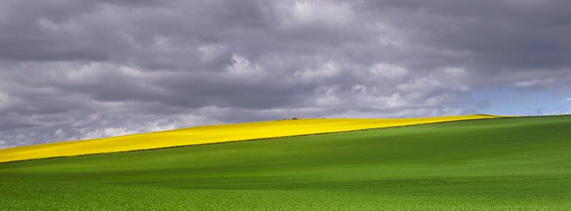 Slash Of Rape, Duffus, Moray, Scotland, elements, stormy, patches, fleeting, sunlight, open, fields, diagonal, layers   photo