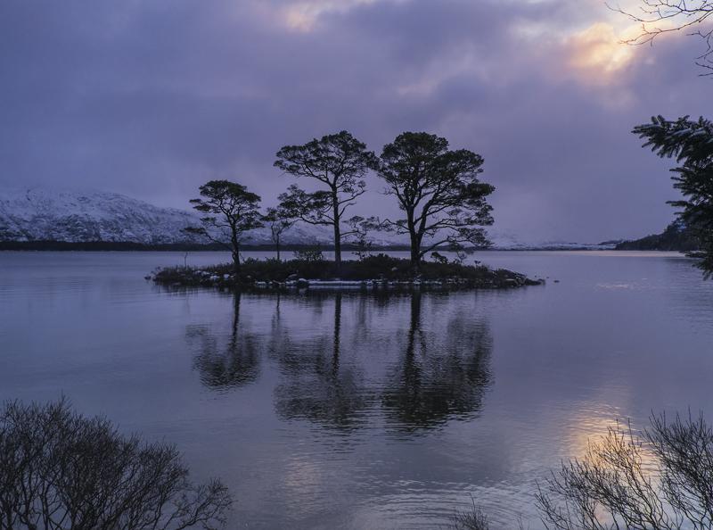 Slattadale Blush, Slattadale, Torridon, Scotland, Scots Pine, trio, island, gently, dawn, silhouetted, ripples, water, i photo