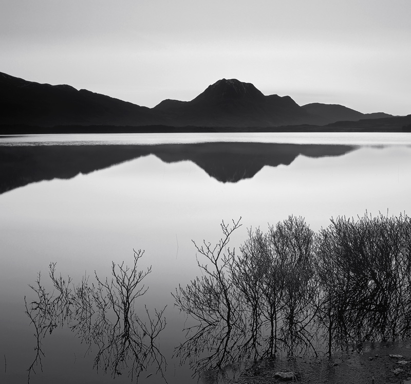 Slattadale Sunrise, Slattadale, Torridon, Scotland, Loch Maree, Slioch, delicate, birch, brush, filligree, sunrise, mono photo