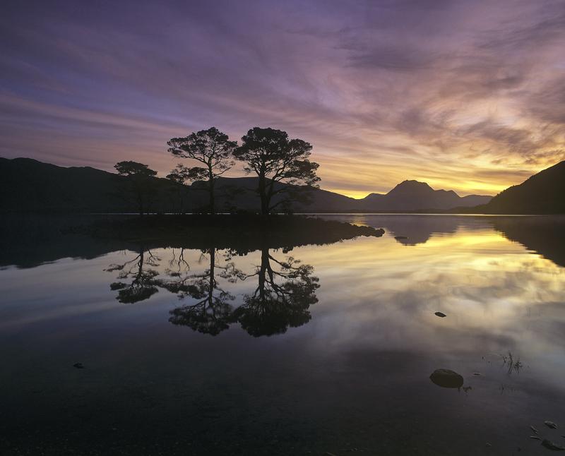 Slattadale Island Sunrise, Slattadale, Torridon, Scotland, gorgeous, sunrise, pine island, Loch Maree, peace, tranquilit photo