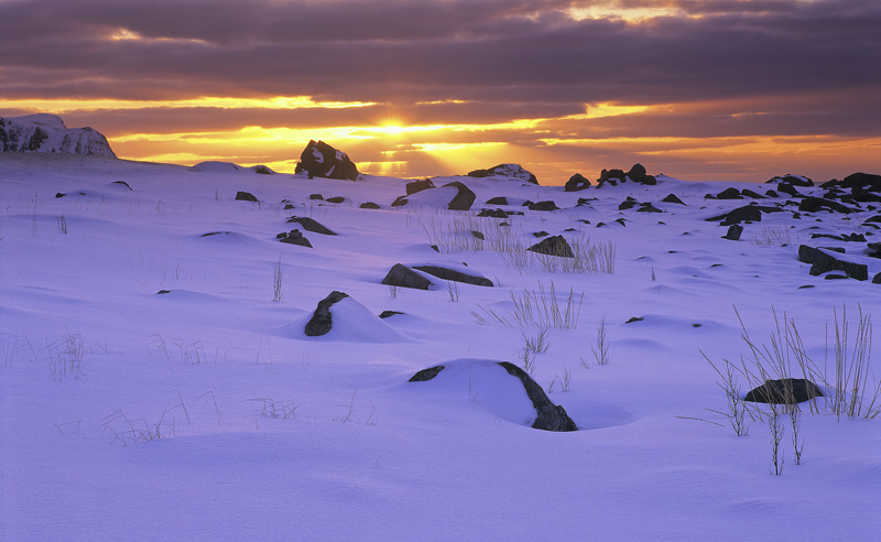 Snow Desert Flakstad, Flakstad, Lofoten, Norway, stunning, sunset, cloud, orange, reflected, blue, rocky, moraine photo