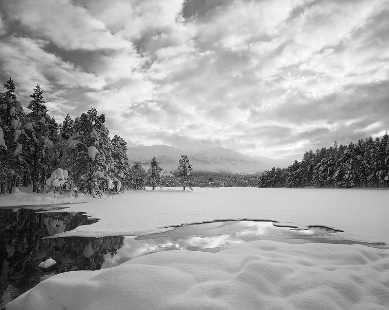 Snow Mallow Mono, Loch an Eilein, Cairngorm, Scotland, marshmallow, pillows, snow, black and white, sky  photo