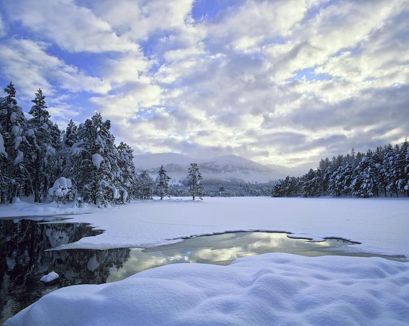 Snow Mallow, Loch An Eilein, Cairngorm, Scotland, deep, pillows, snow, fluffy, white, blue, clouds, dimpled, unblemished photo