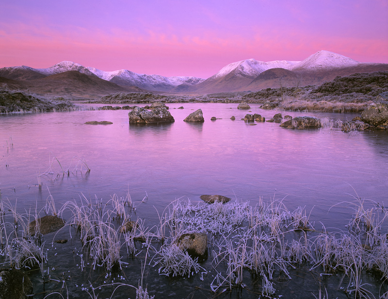 Strawberries and Cream, Rannoch Moor, Glencoe, Scotland, Black Mount, snow, peat hags, frosted, reed, Loch N'Achlaise, d, photo