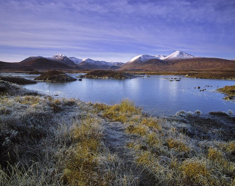 Touch of Frost Rannoch, Rannoch Moor, Glencoe, Scotland, moor, high, snow, Black Mount, palette, ice, frost, gold, maroo photo
