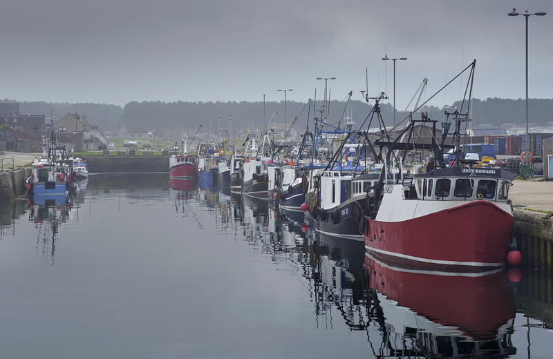 Trawlers Burghead, Burghead, Moray, Scotland, grey, misty, morning, summer, haar, sea, primary, parade, colours, reflect photo