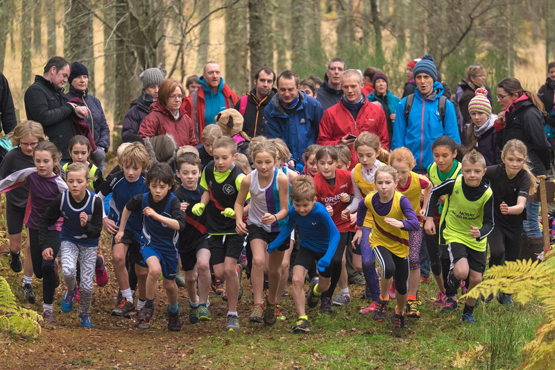 An excited start to the mixed boys and girls under 11 (non-championship) race in the North District Champs