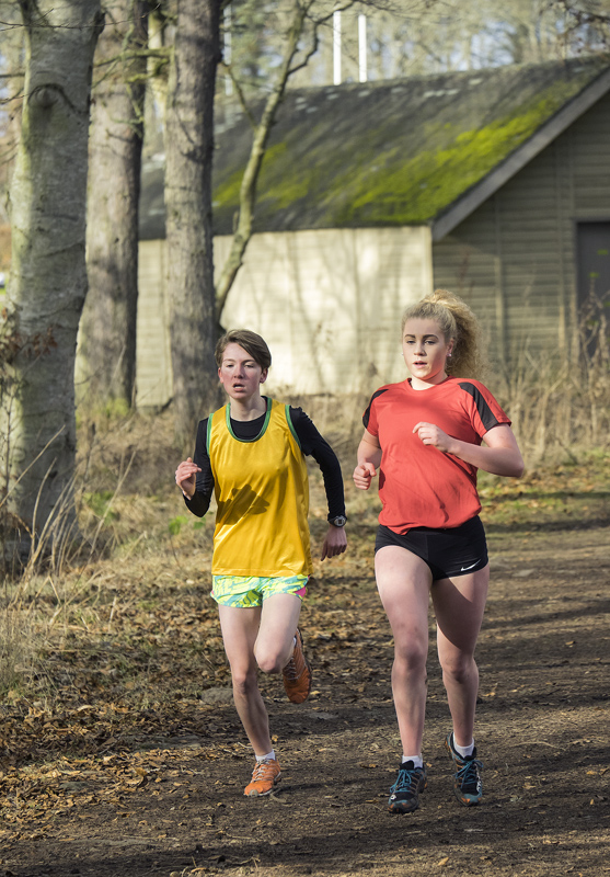 Grace Whelan and Sophia Greene pulled well ahead of the field in the under 17 girls north district secondary schools cross country...