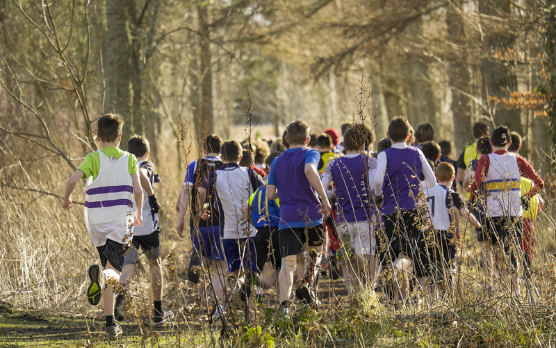 Disappearing off down a sunlit woodland track behind Gordonstoun School is the under 15 boys cross country race. David...