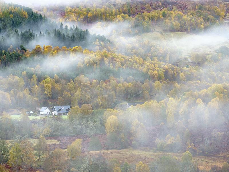 Valley Mist Glen Affric, Glen Affric, Highlands, Scotland, puffs, floaty, white, mist, drifted, valley, glen, concealing photo