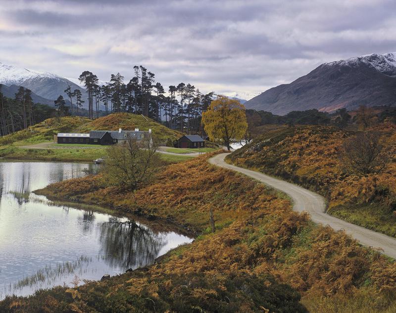 Winding Road Affric, Glen Affric, Highlands, Scotland, private, road, autumn, lodge houses, grass, bracken, red, birch  photo