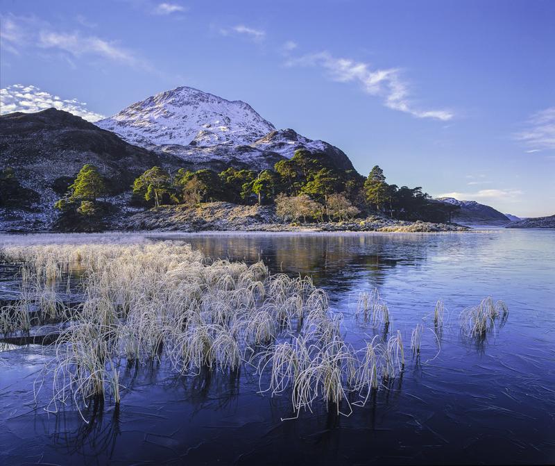 Winter Blues Loch Clair, Loch Clair, Torridon, Scotland, sunrise, coldest, air, cooling, ice, reeds, hoar frost, stems photo