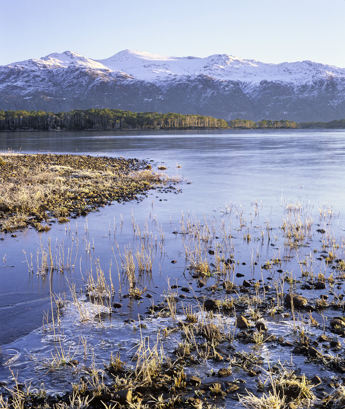 Winter Freeze Slattadale, Slattadale, Torridon, Scotland, freezing, cold, crisp, ice, Loch Maree, fractured, Scots pine  photo
