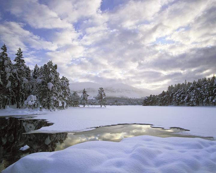 Winter Loch An Eilein, Loch Eilein, Cairngorm, Scotland, cold, snow, blanket, deep, beautiful, water, reflections, loch, photo