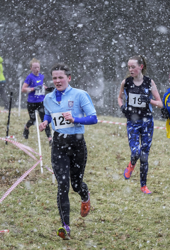 Shortly after the leading pair of Anna and Anya passed by a blizzard took hold and became increasingly harsh.  Doubtless it was...