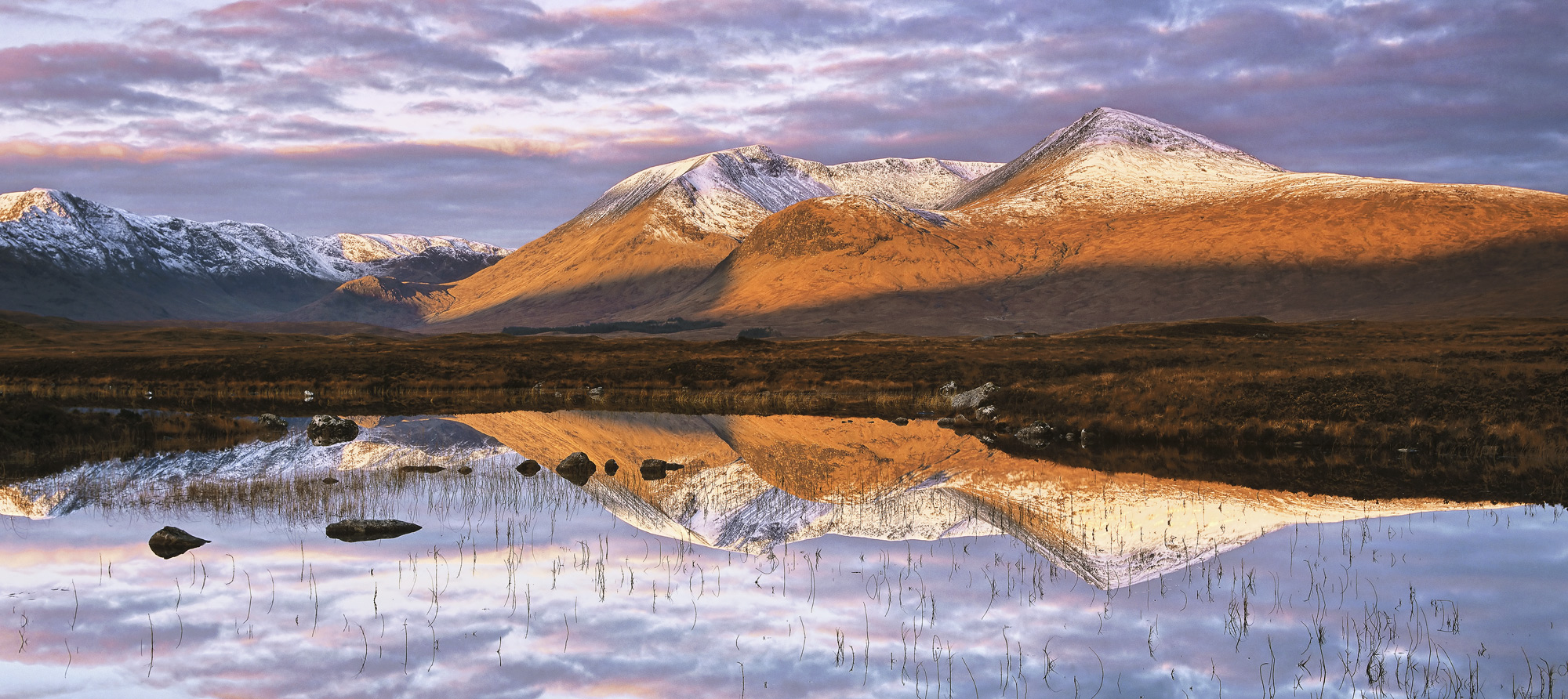 The mountains of the Blackmount snow dusted above a carpet of intense Autumn oranges and golds at sunrise beneath a gorgeous...