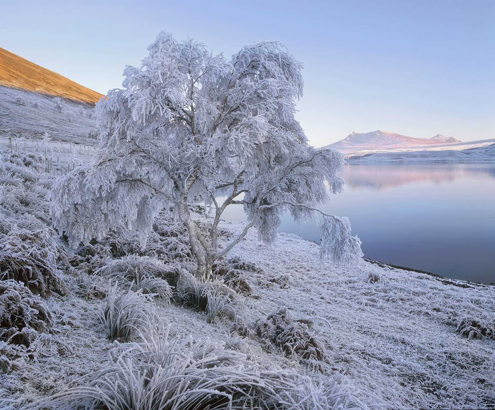 With temperatures plumetting to minus 23 degrees celcius and freezing fog settling over Loch a Chroisg I expected a savage hoar...