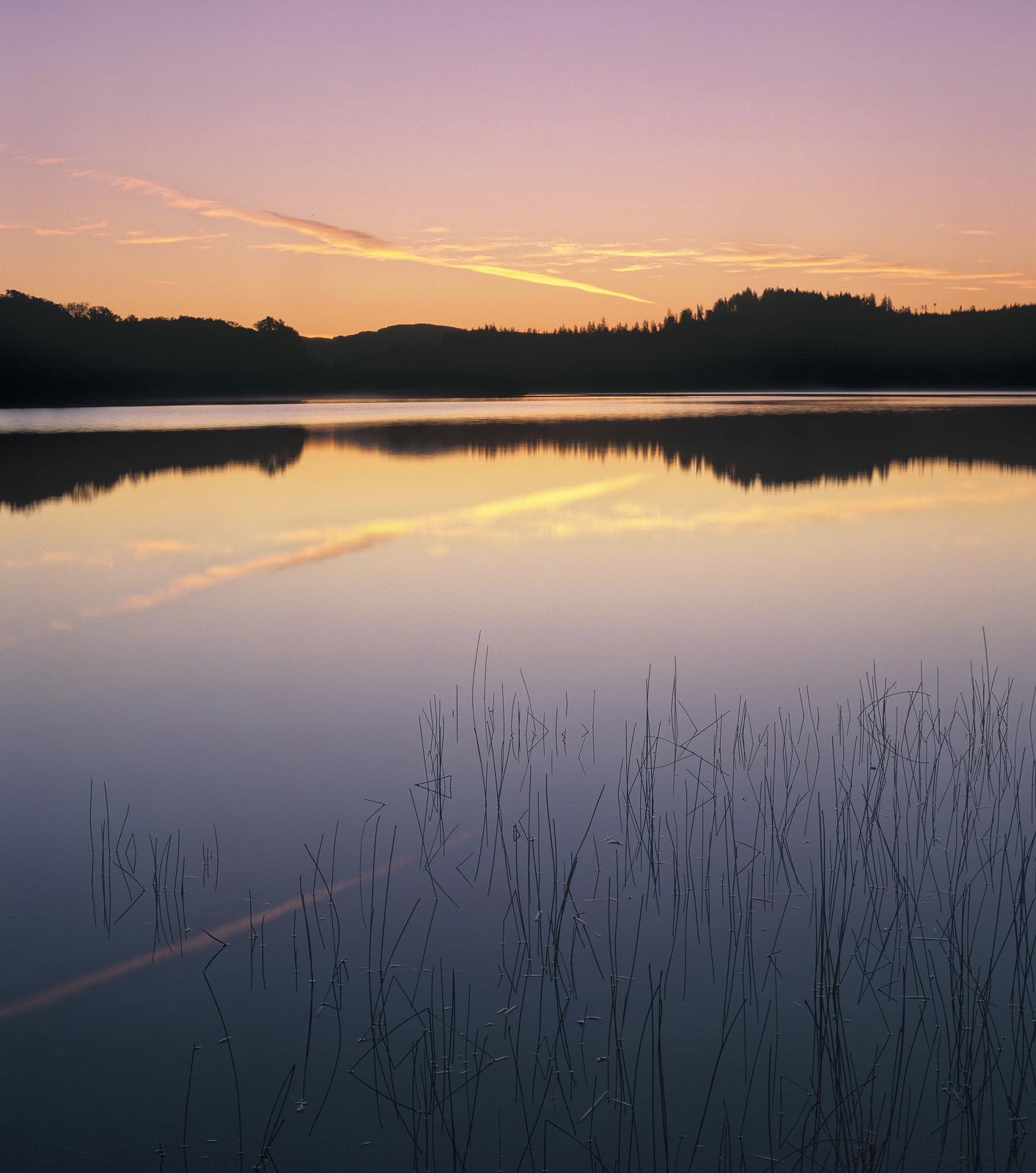 Achray Pastel, Loch Achray, Trossachs, Scotland, moment, perfection, twilight, sunrise, blends, seamlessly, smoothly, re, photo