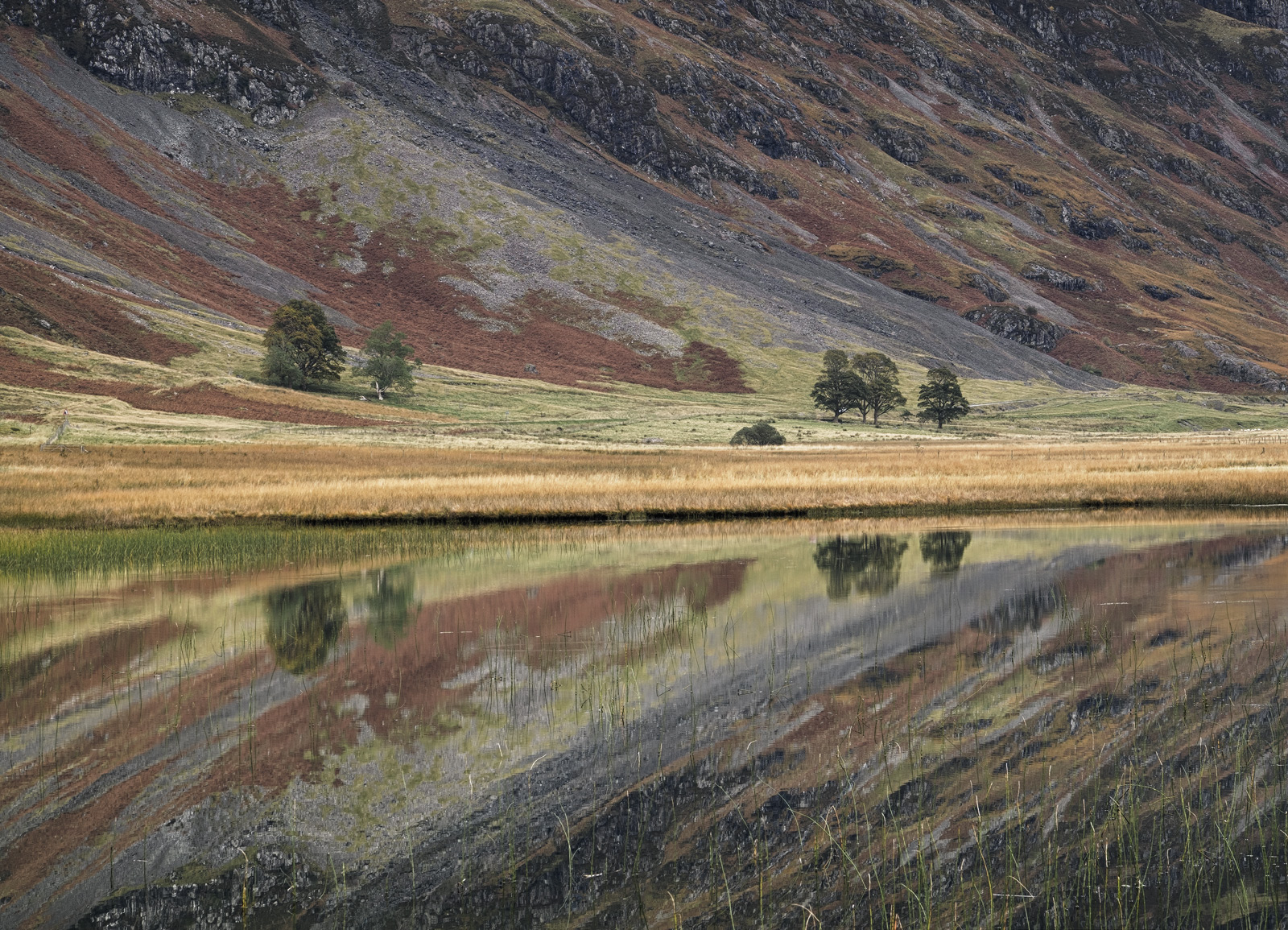 On the rare occasions that the air is still down the length of this mountainous glen, Loch Achtiochtan can produce the most astounding...