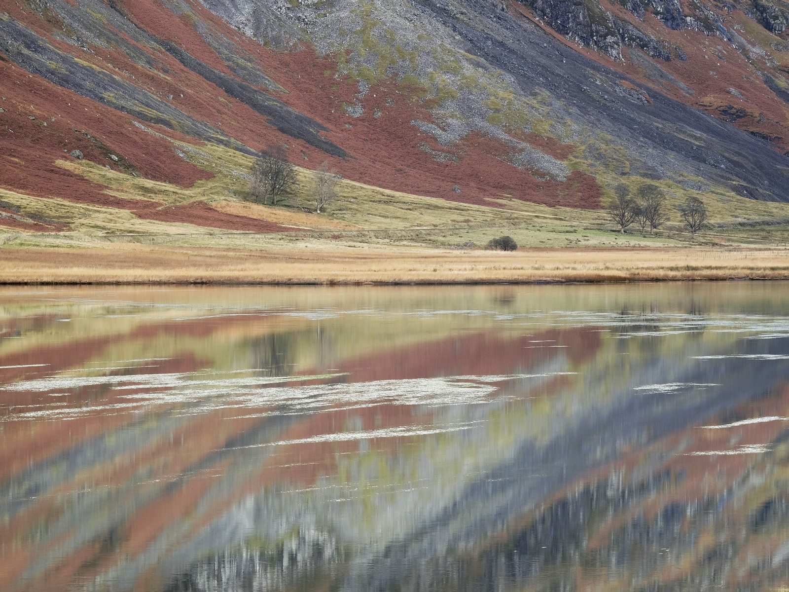 If there is likely to be a still Autumn afternoon in Glencoe I often make my way to the shallow waters of Loch Achtriochtan which...