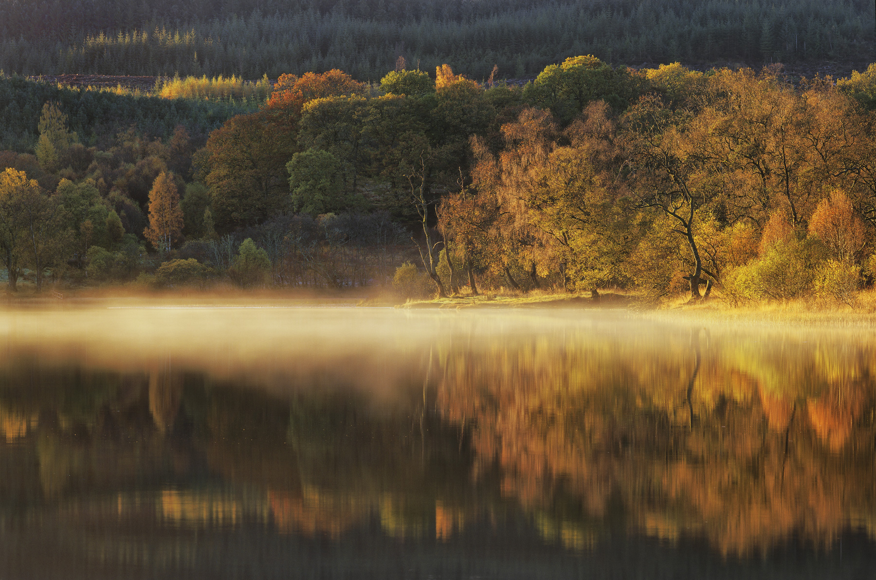 As the sun started to heat up the surface of Loch Achray on a very cold and frosty morning in late October so magically did moisture...