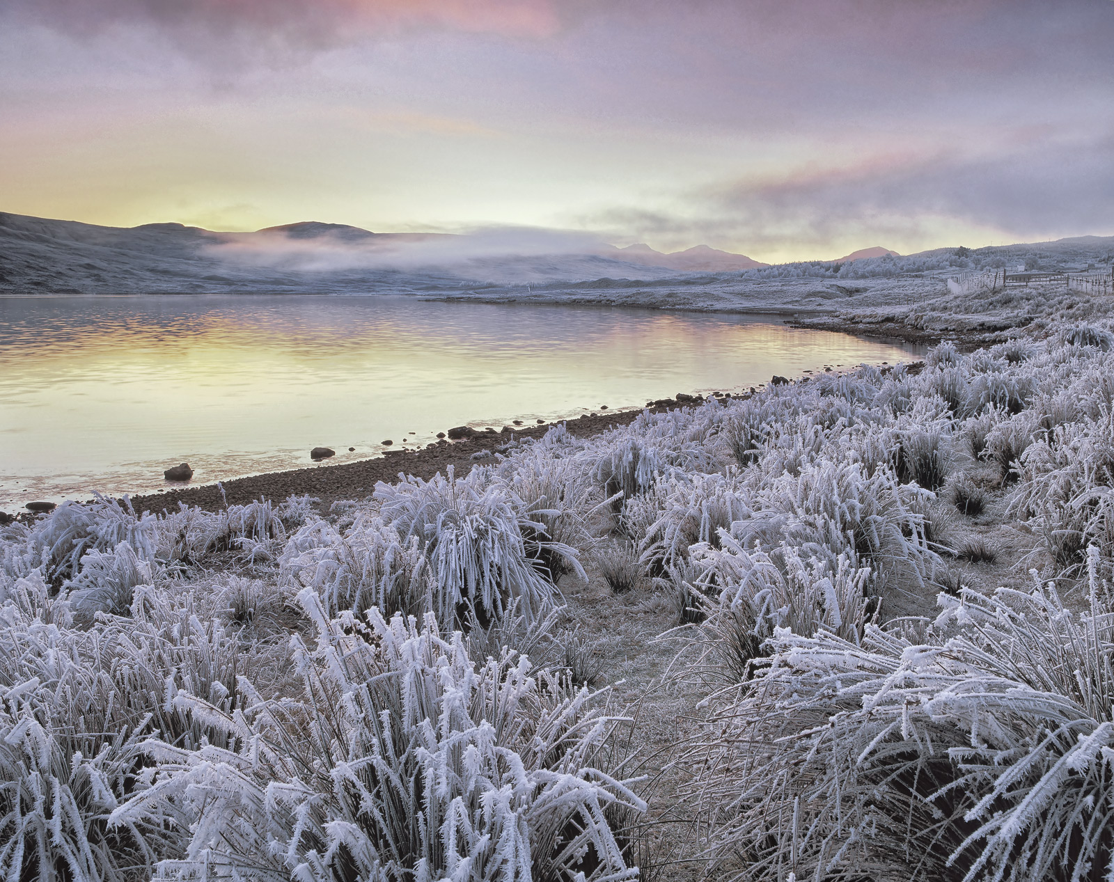 Bone chilling cold greeted me at sunrise and the temperature refused to budge for the entire day. At sunset I migrated...