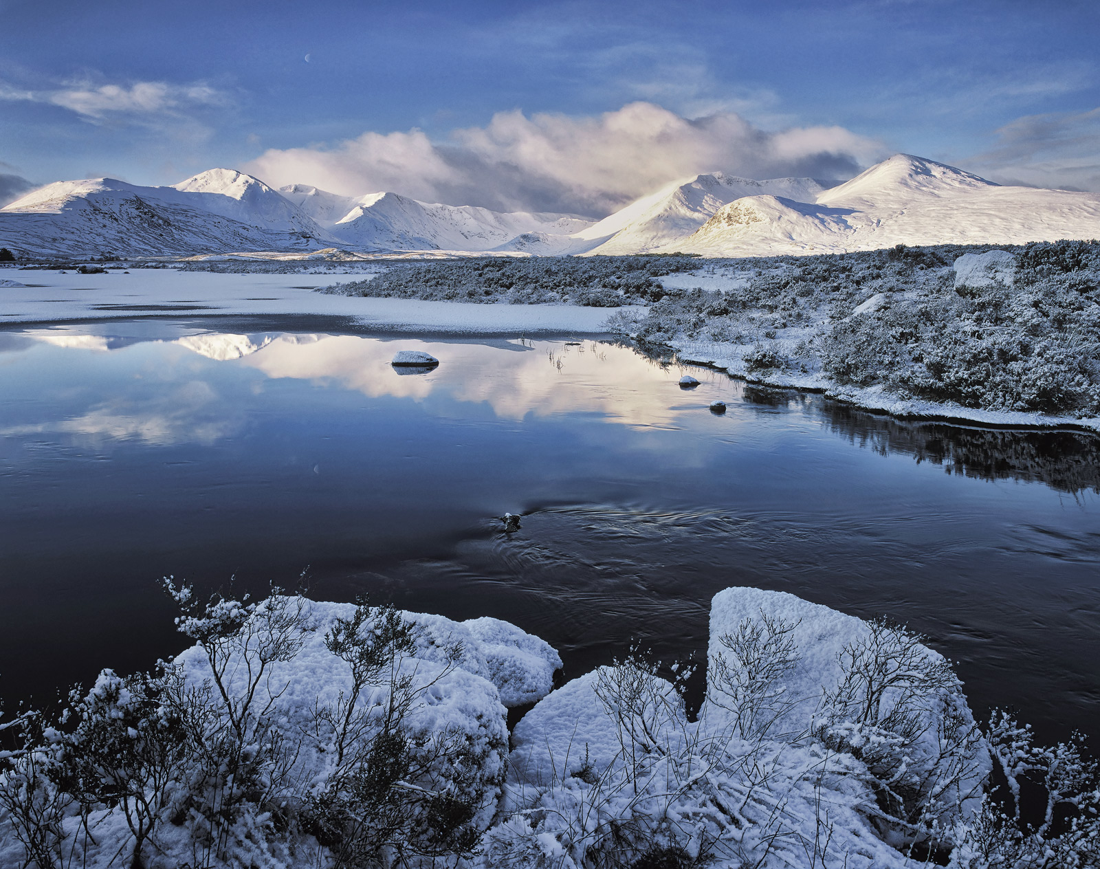 On a chilly December morning I found myself exploring familiar territory at the edge of Lochan N' Achlaise gazing towards the...