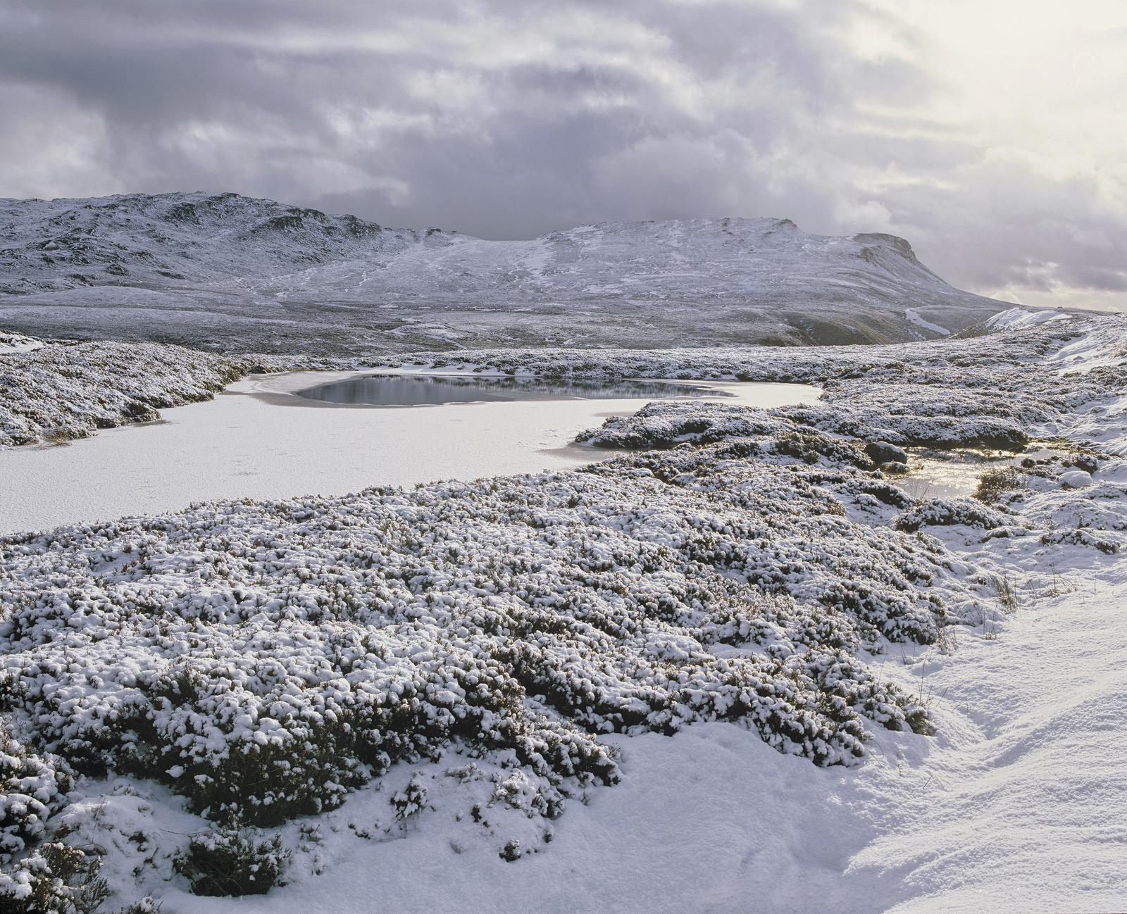 A spring blizzard laid across Moray's lung, Dava moor, an open expanse of moorland that strides out towards the Cairngorms.&nbsp...