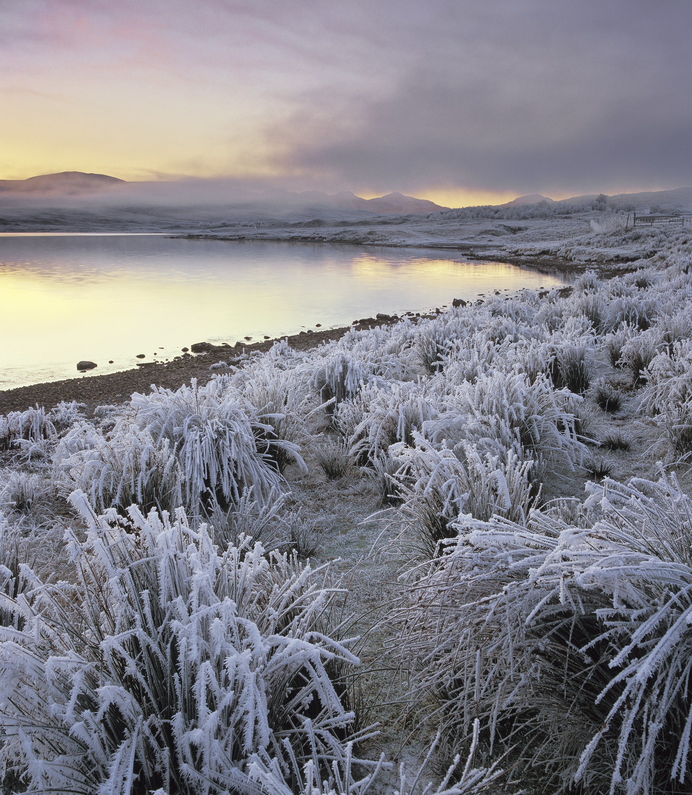 A winter sunset at the edge of Loch A Chroisg, the temperature had stayed well below zero degrees Celcius all day, the long grasses...
