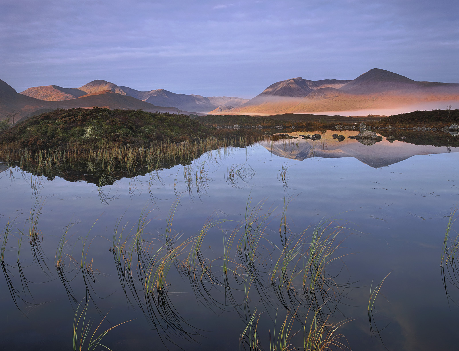 Autumn Mellow, Rannoch Moor, Glencoe, Scotland, sublime, morning, wraiths, mist, composition, grasses, mountain, palette, photo
