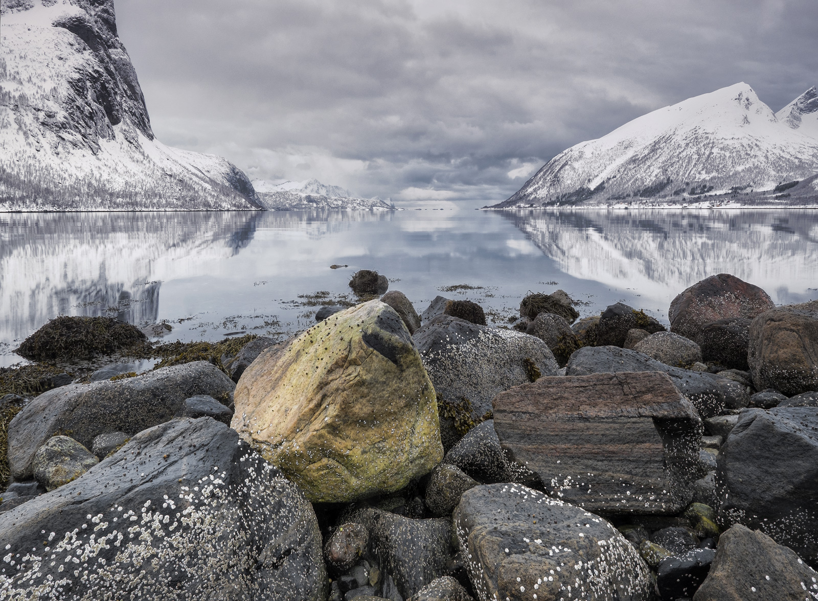 Colour can be at a premium during the winter weather at senja island but with a little care it can be found at the edge of the...