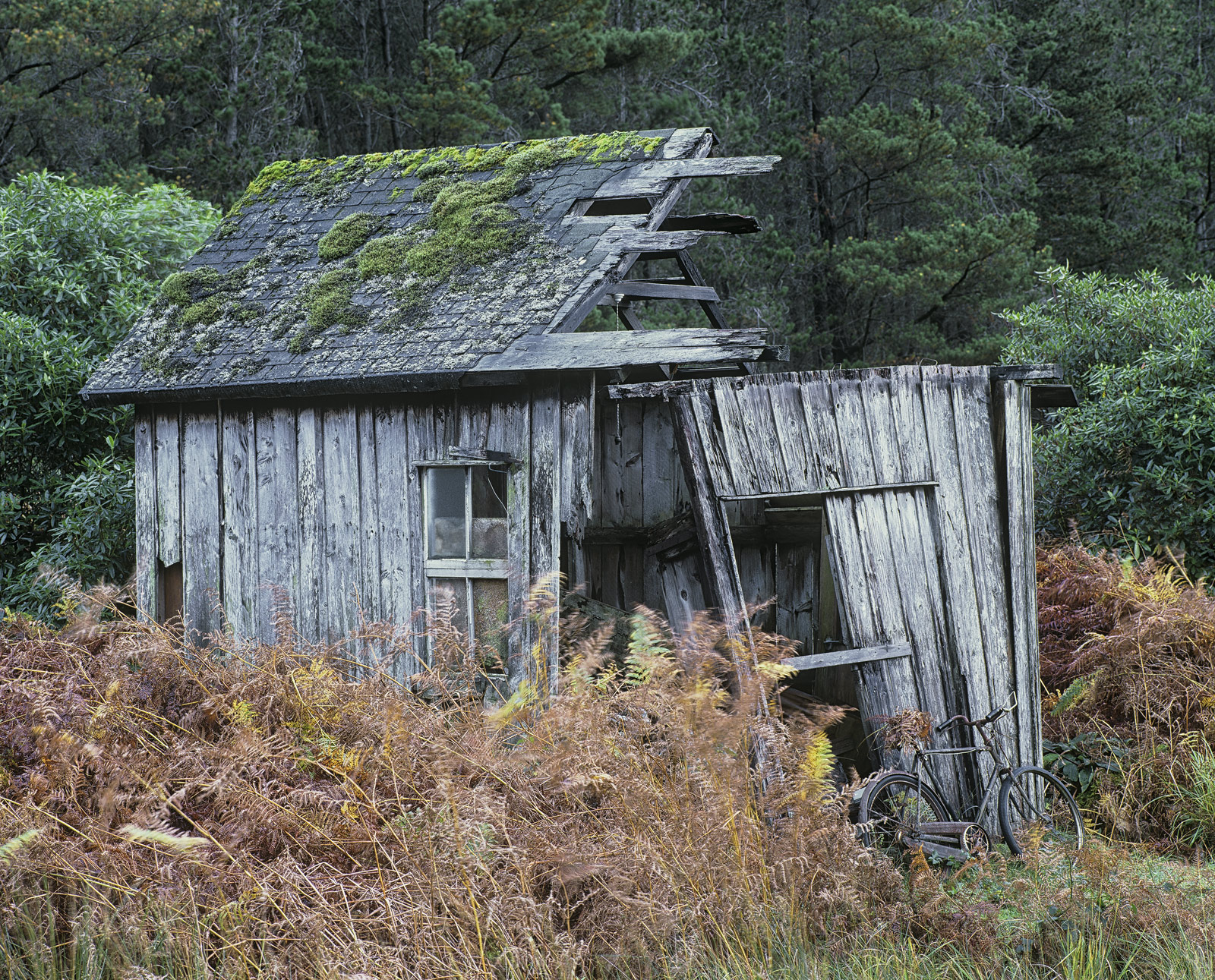 Bike Shed, Glen Etive, Glencoe, Scotland, deterioating, collapses, bicycle, abandoned, shed, cycle   , photo