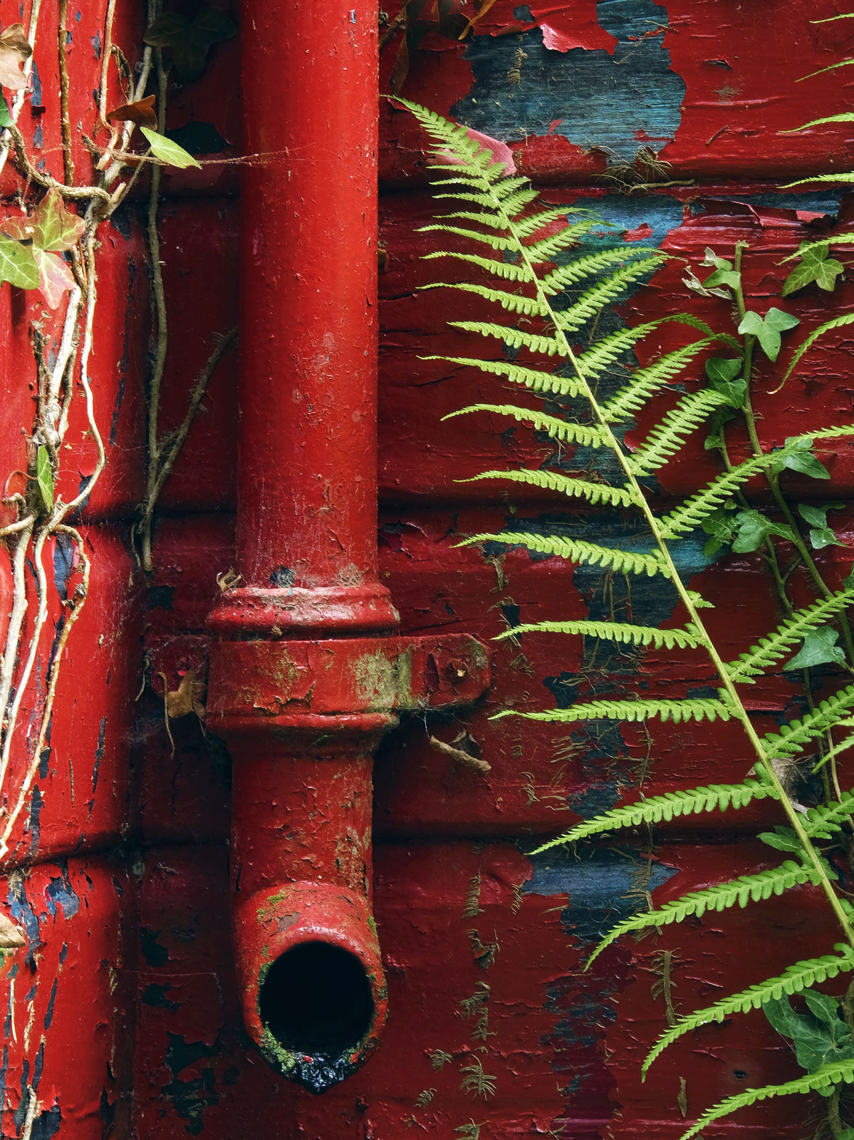 A storm drain attached to an old and decrepit boat shed at the edge of Blairs Loch in Forres. The shed is painted red currently...