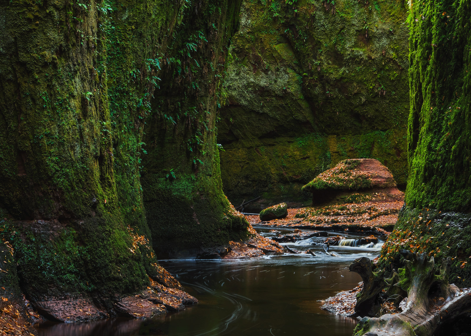 A woodland glade in the Trossachs conceals a fascinating emerald gorge of moss covering red sandstone. The moss hanging...