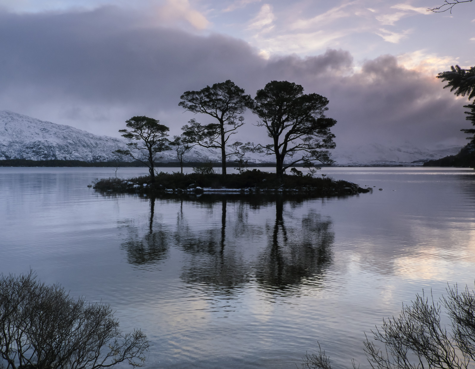 This beautiful little island of Scots Pines is quite difficult to access near Slattadale on the edge of Loch Maree but it is...
