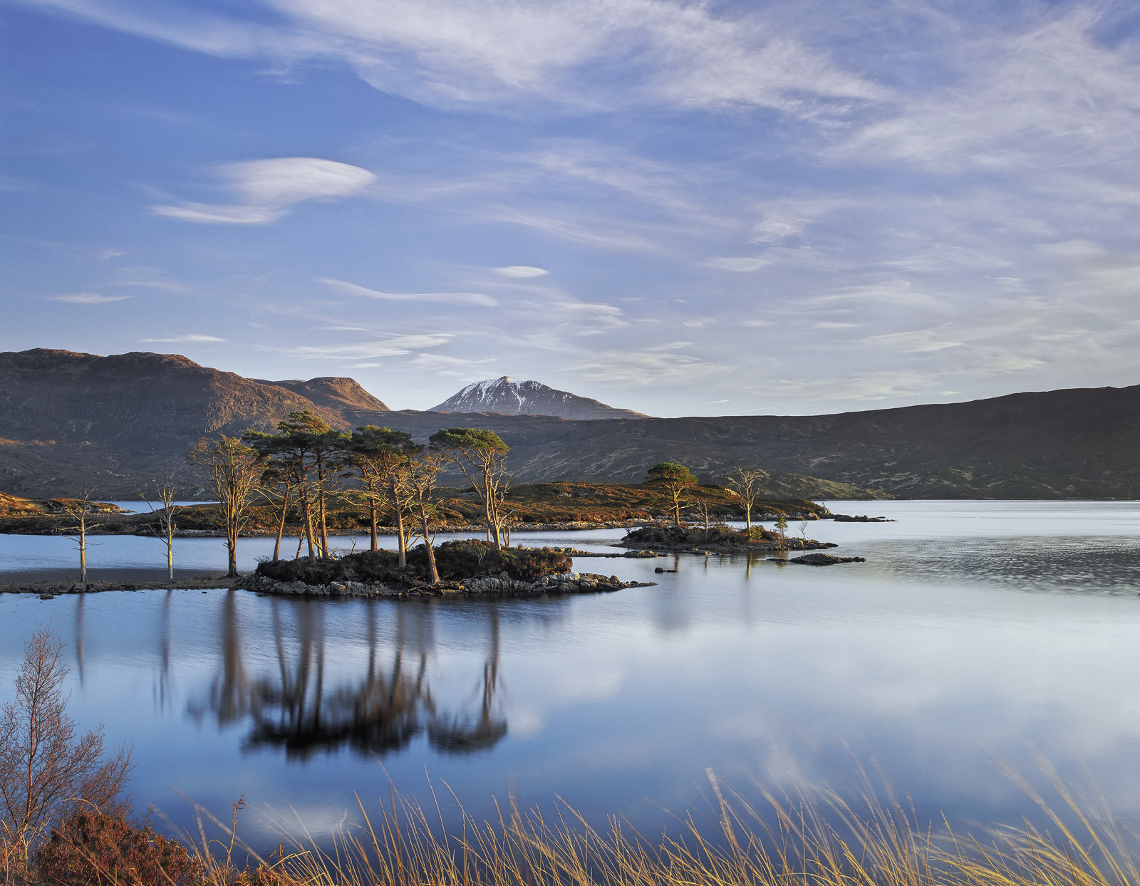 The most beautiful golden sunlight squeaked it's way beneath a thin layer of cloud and caramelised the scots pine trees on their...