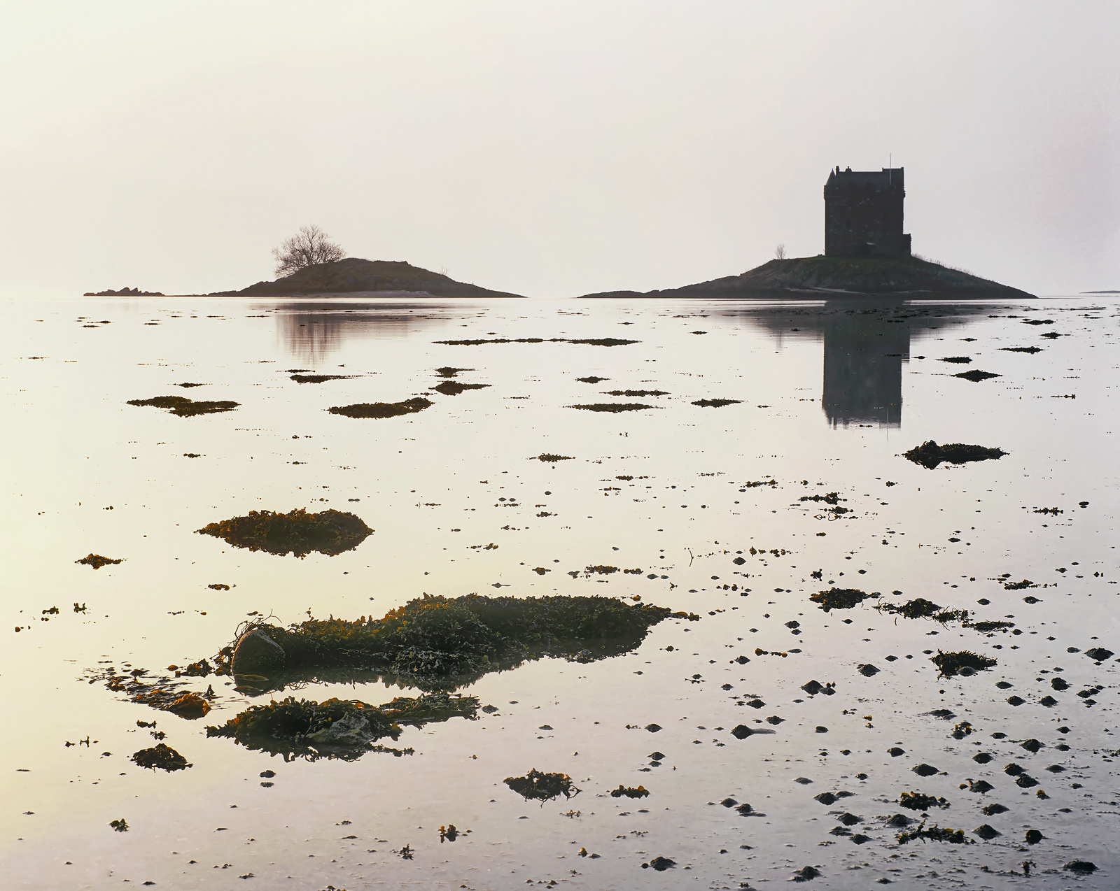 The champagne colours of a misty autumnal sunset swirl around the Castle Stalker on its island plinth.  Yet it was so still...